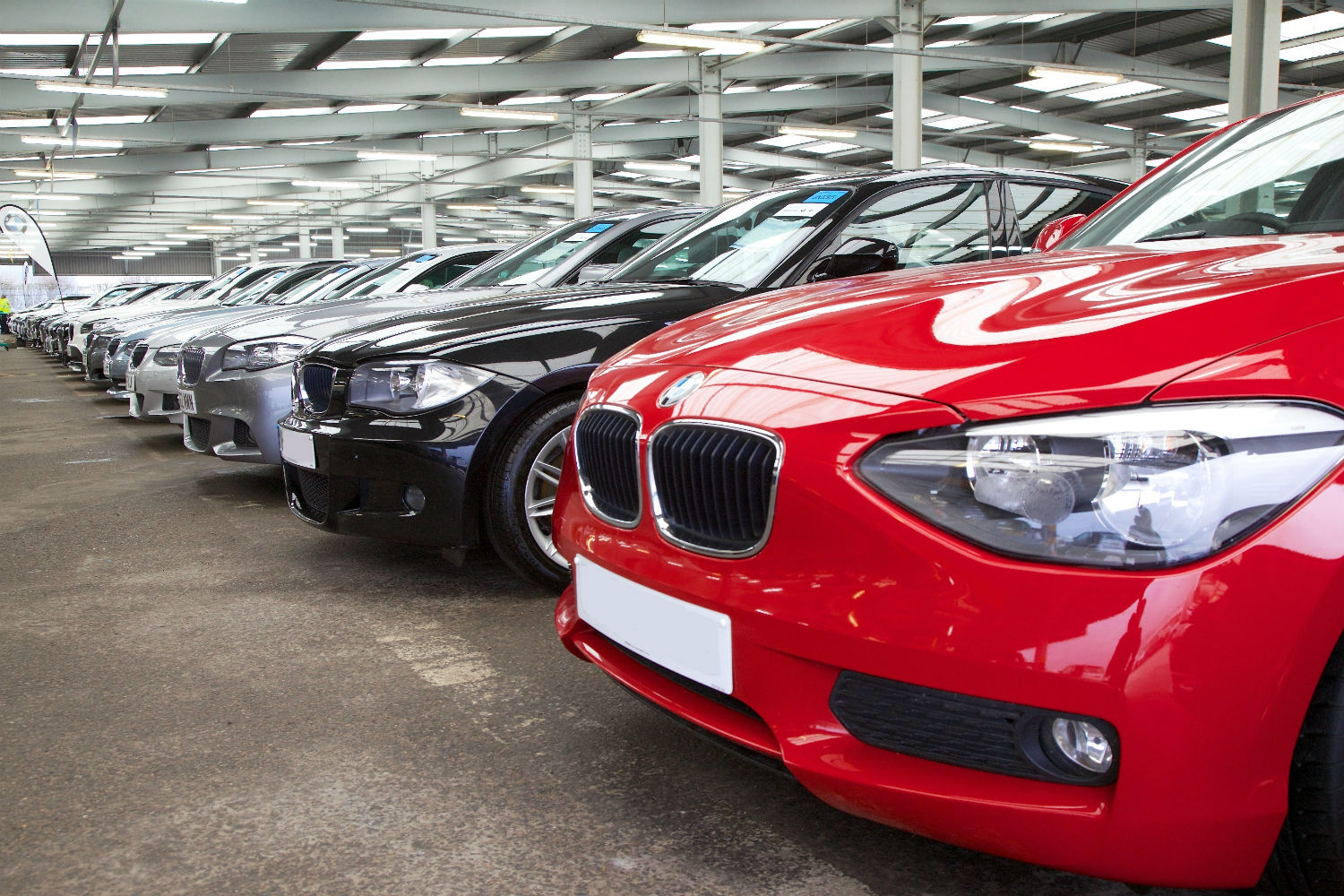 Fleet cars parked and lined up for an auction