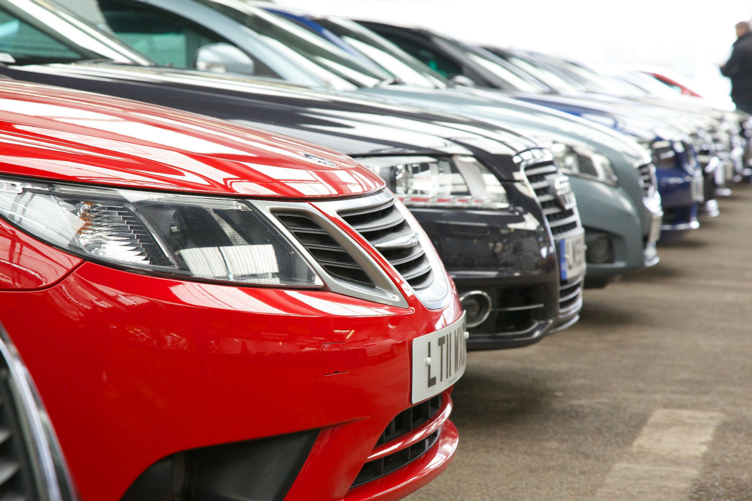 Wholesale and Retail vehicles for sale