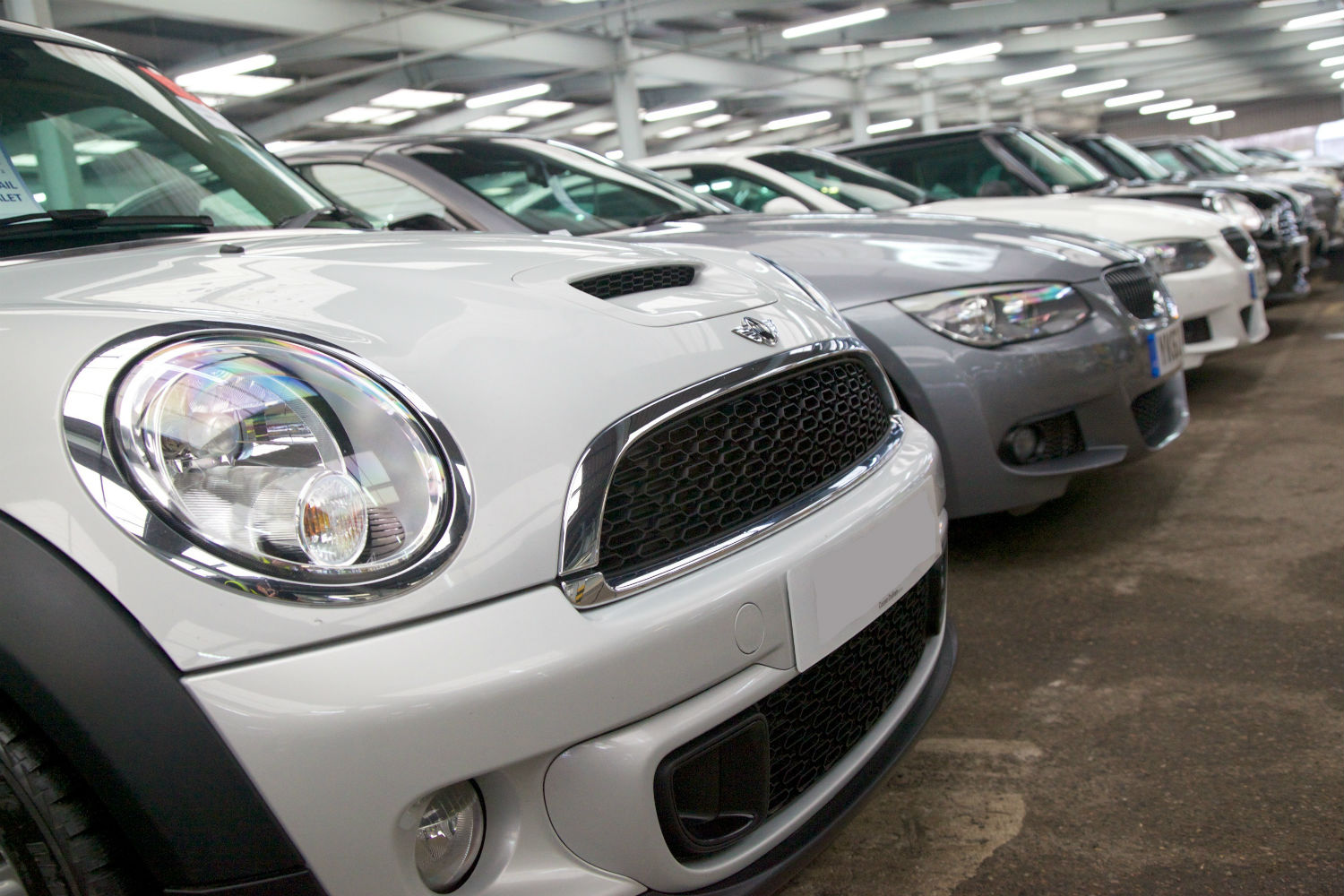 Vehicles prepared for sale at auction