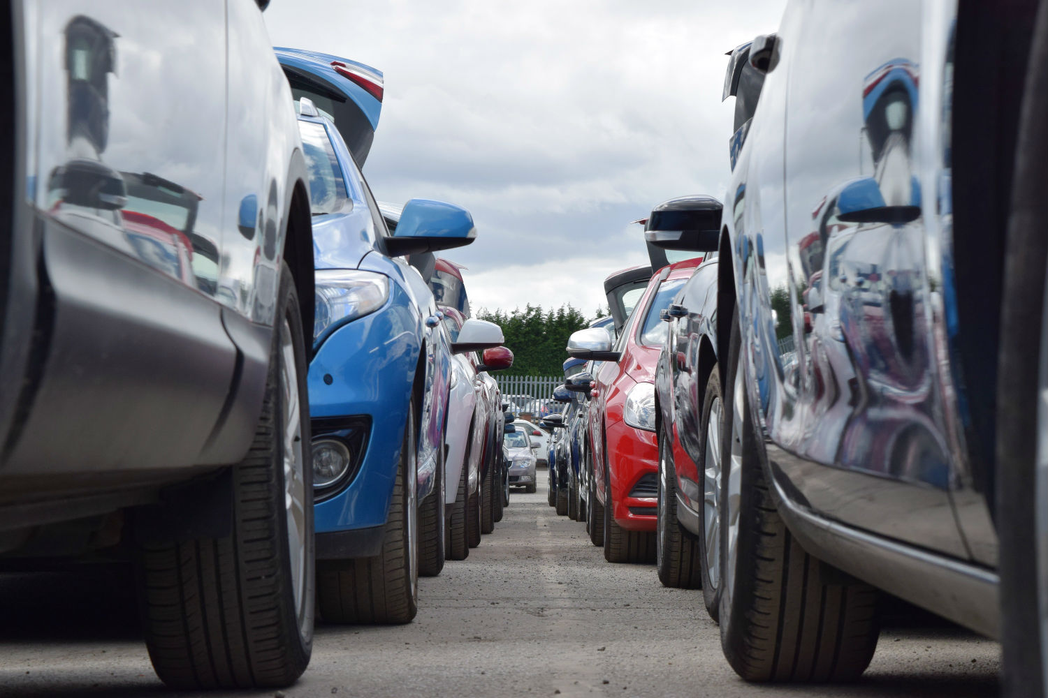 Vehicles prepared for auction at Manheim