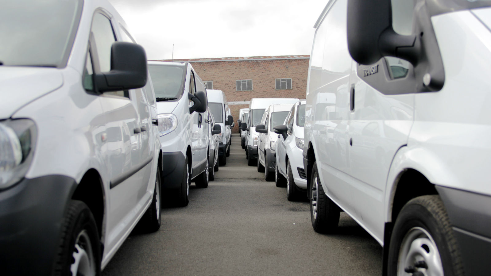 Vans waiting for auction at Manheim