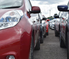 Used cars at a Manheim auction
