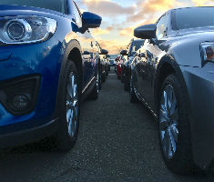 Auction vehicles at Manheim and Motors.co.uk
