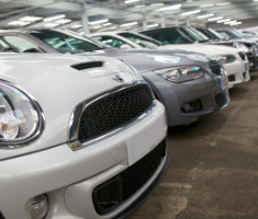 Vehicles prepared for auction