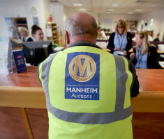 Manheim Team Member