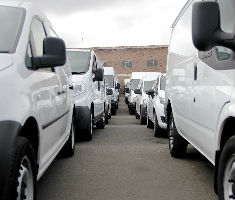 Vans lined up at Manheim