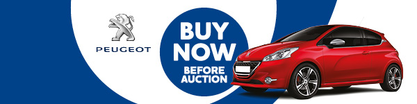Peugeot cars available to Buy Now before the auction