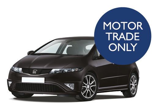 Listers at Manheim Birmingham exclusive to the motor trade